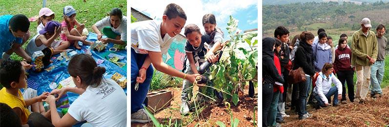 Programa Redes Ecológicas | IPESA