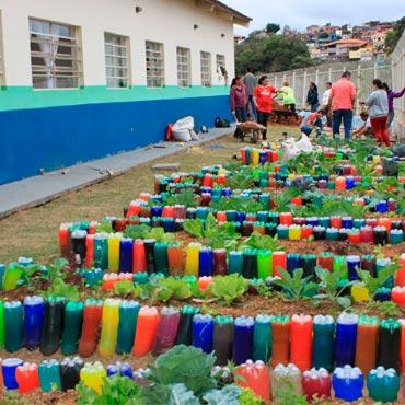 Escolas Ecológicas | IPESA
