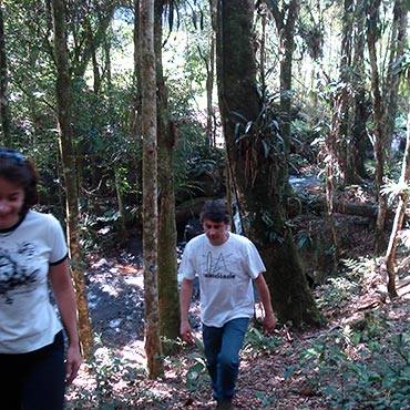 Fortalecimento Institucional da ONG Mata Nativa
