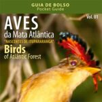 Projeto Guia de Aves | Ipesa
